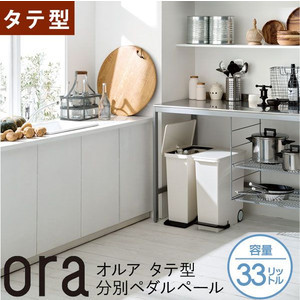 ora(オルア)タテ型 分別ペダルペール 33L